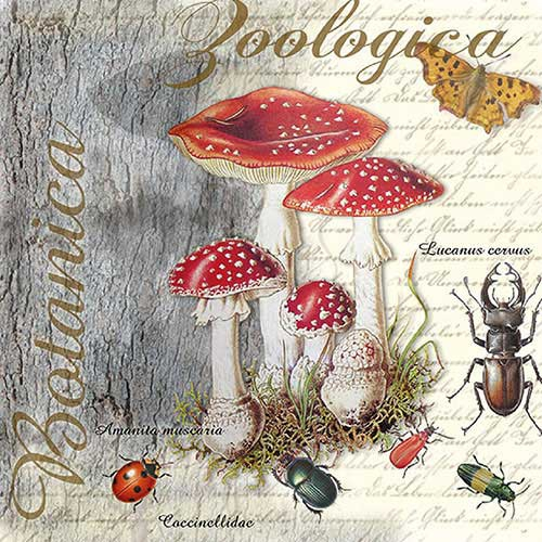 Image of Ambiente Servetten 25x25cm Fly Agaric 8712159158052