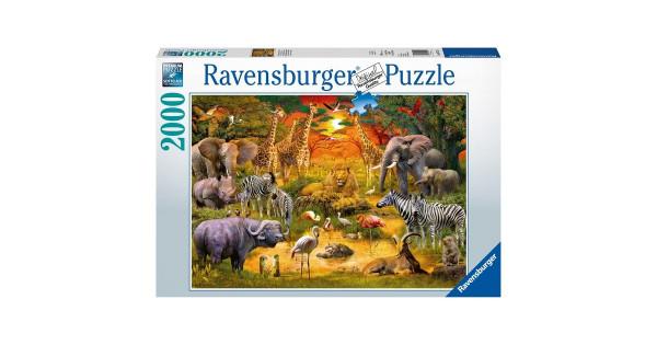 Ravensburger Puzzel bij de waterplas
